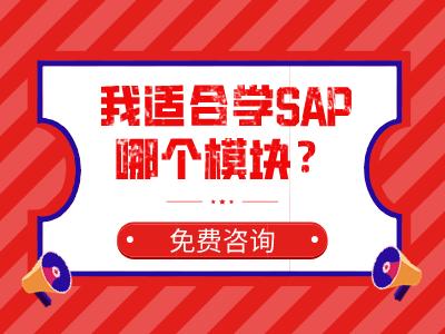 我适合学SAP哪个模块?